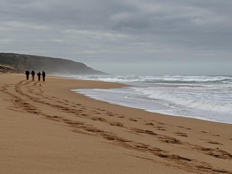 Waitpinga Beach on the Southern Ocean Walk